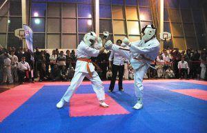 Каратисты из района встретятся со спортсменами из Туниса. Фото: архив, «Вечерняя Москва»