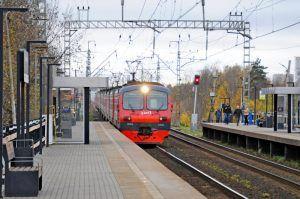 Свыше 150 тысяч человек посчитали стоимость проезда на странице МЦД. Фото: Светлана Колоскова, «Вечерняя Москва»