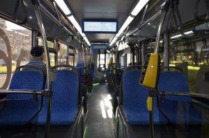 Автобусы от станции МЦК ЗИЛ до «Острова мечты» не будут курсировать. Фото: Анна Быкова