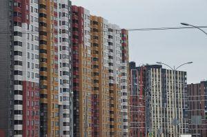 В столице начала работать система мониторинга больных COVID-19. Фото: Анна Быкова
