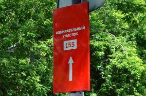Пятый день голосования по Конституции проходит без нарушений и сбоев. Фото: Анна Быкова
