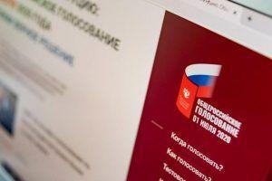 Международные эксперты: Конфиденциальность голосования соблюдается. Фото: сайт мэра Москвы