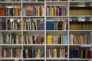 Лекцию о книжном издании проведут сотрудники библиотеки района. Фото: Денис Кондратьев