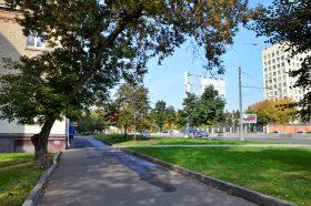 Жителям расскажут о жизни в районе в году Великой Отечественной войны. Фото: Анна Быкова