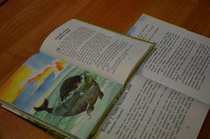 Сотрудники библиотеки района расскажут детям о многообразии профессий. Фото: Анна Быкова
