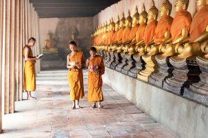 Лекцию о буддизме в Монголии прочтут на сайте Высшей школы экономики. Фото: pixabay.com