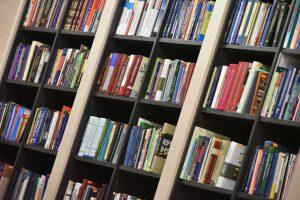 Образовательная лекция пройдет в библиотеке Василия Жуковского. Фото: Владимир Новиков, «Вечерняя Москва»