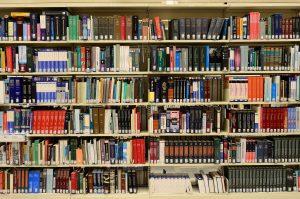 Интерактивная лекция состоится в библиотеке имени Федора Достоевского. Фото: pixabay.com